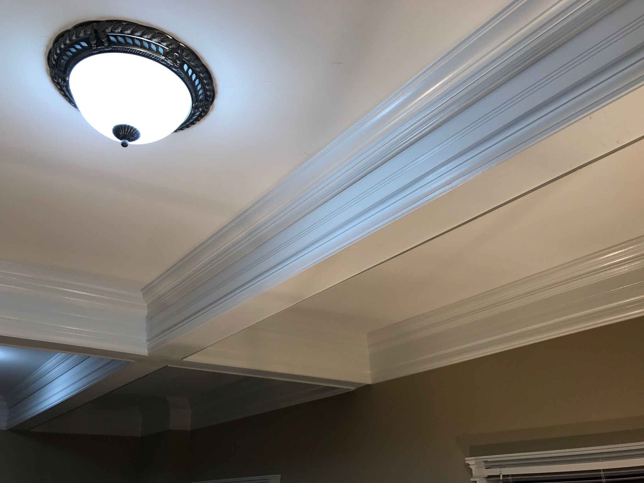 coffered ceiling in Washington Michigan